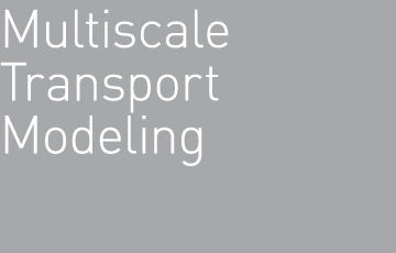 Multiscale Transport Modeling