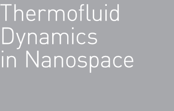 Thermofluid Dynamics in Nanospace